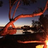 Cooloola, Simpson Desert and Tin Can Bay - Photo Comp