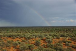 There is apot of Gold somewhere out there in the Great Victoria Desert