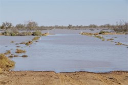 The flooded Birdsville track from the northern side of the Cooper
