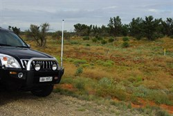 Our first sightings south of Roxby Downs