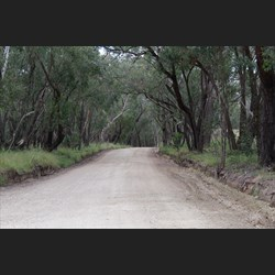 One of the Roads that will take you to Spring Gully