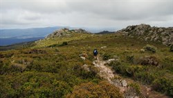 track and views on the plateau at Mt Roland
