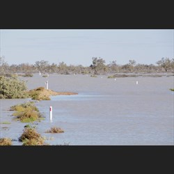 The Birdsville Track stayed flooded for over 7 months