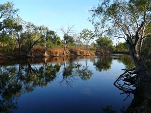 Following the Big Wet - 2011 Trip Part 18: Flinders