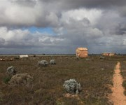 Nullarbor Roadhouse to Cook via Knowles Cave